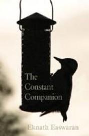 The Constant Companion