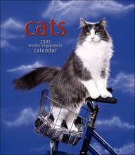 2005 Cats Weekly Engagement Calendar