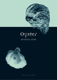 Oyster (Animal)