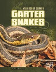 Garter Snakes (Edge Books)