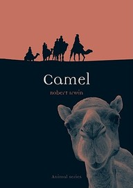 Camel (Reaktion Books - Animal)