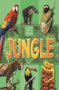 What Can I See?: Jungle
